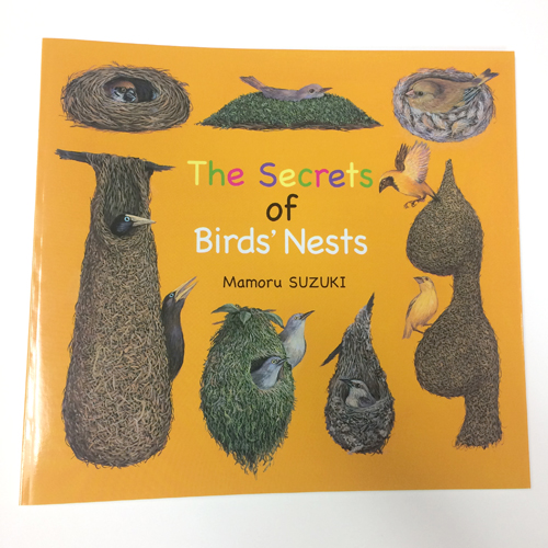 The Secrets of Birds' Nests