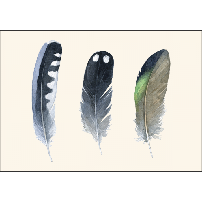Earth Sky + Water - Waterbird Feathers Boxed Notes