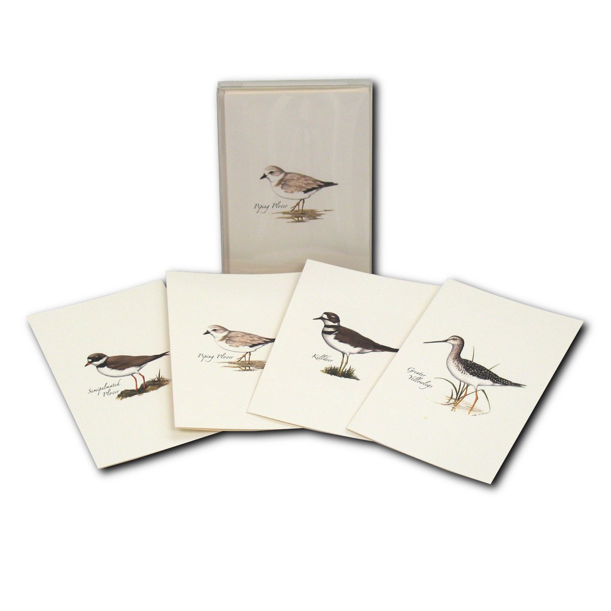 Earth Sky + Water - Shorebird Assortment Boxed Notes
