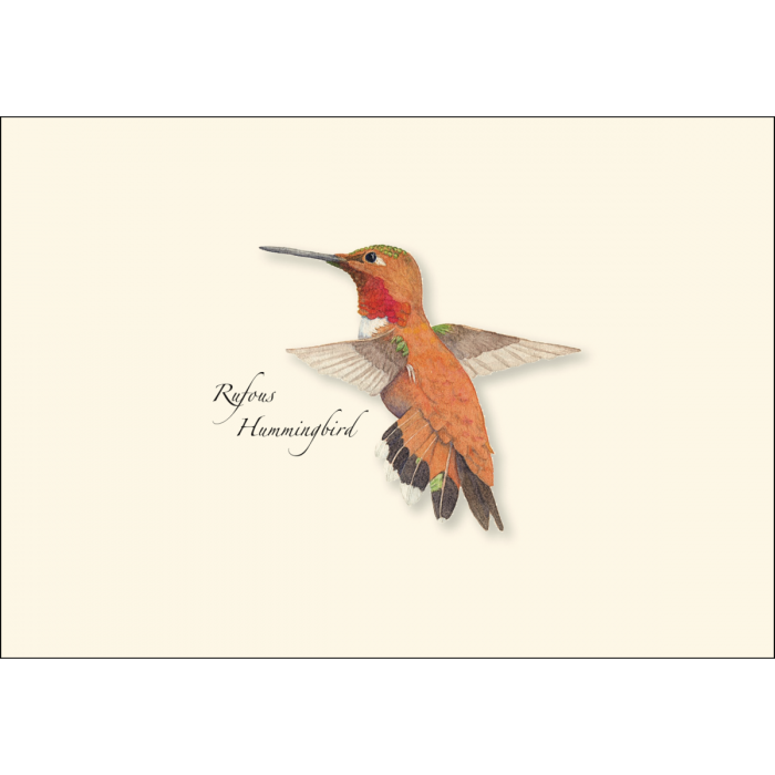 Earth Sky + Water - Western Hummingbird Boxed Note Assortment