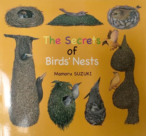 The Secrets of Birds' Nests
