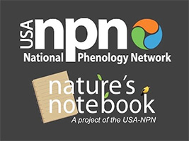natures notebook