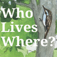 wholiveswhere