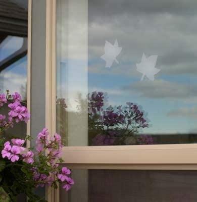 Window Alert Decal - Maple